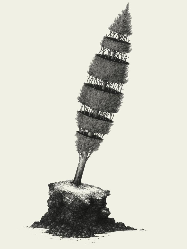 Cinara cupressi #03, 2011