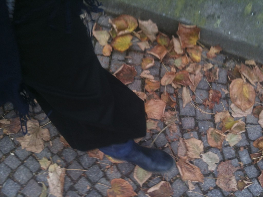Walking and leaves