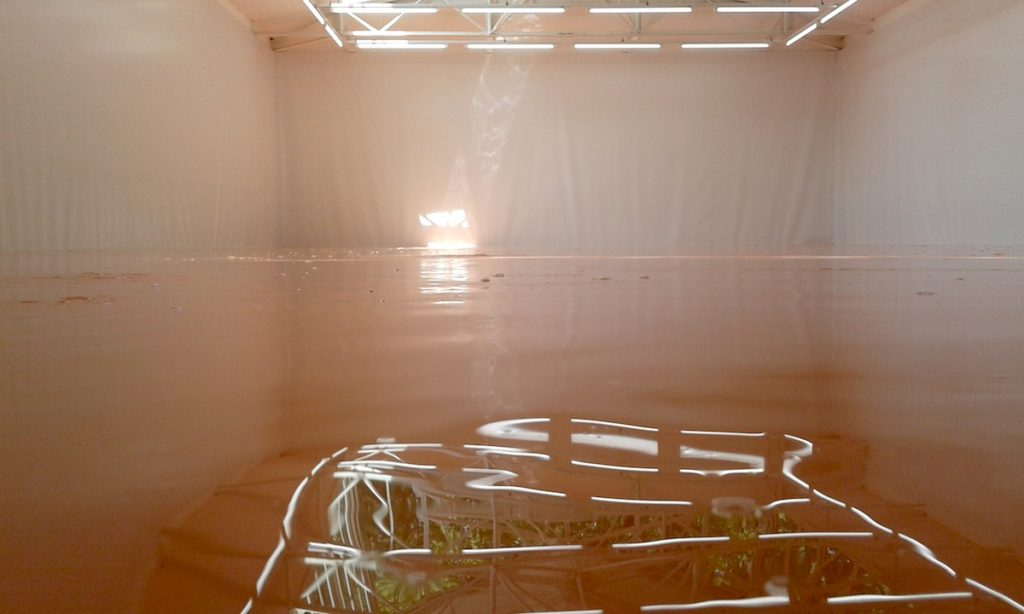 Swiss Pavilion, 55 Venice Art Biennale