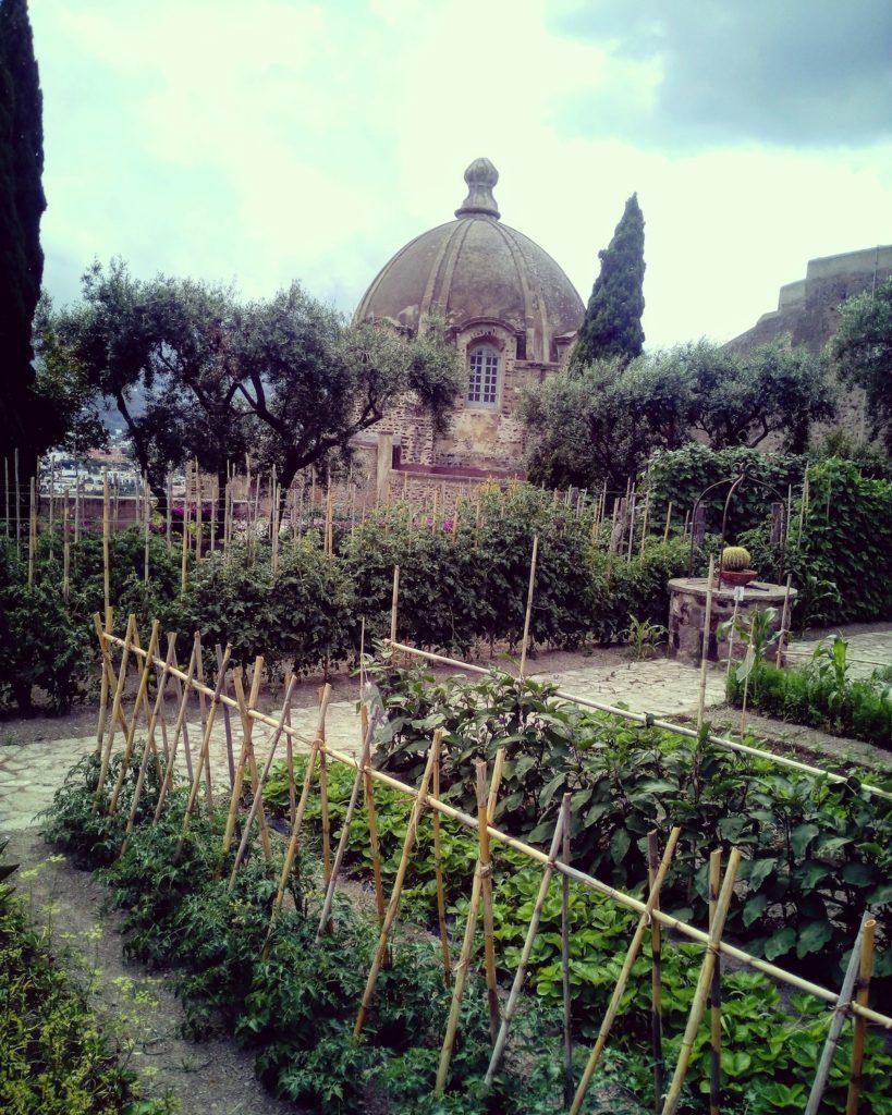 Orto del Castello Aragonese Ischia