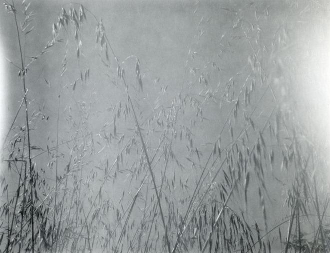 Jeanne Madic, Ideal, 6x8, 15cmx21cm
